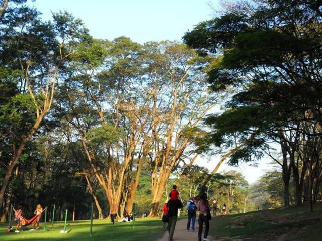 Caminhada Parque do Carmo