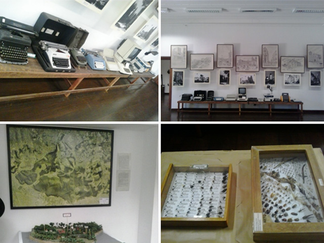 Museu do Meio Ambiente Parque do Carmo